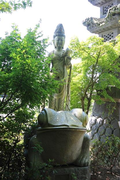 如意輪寺(かえる寺)(2)