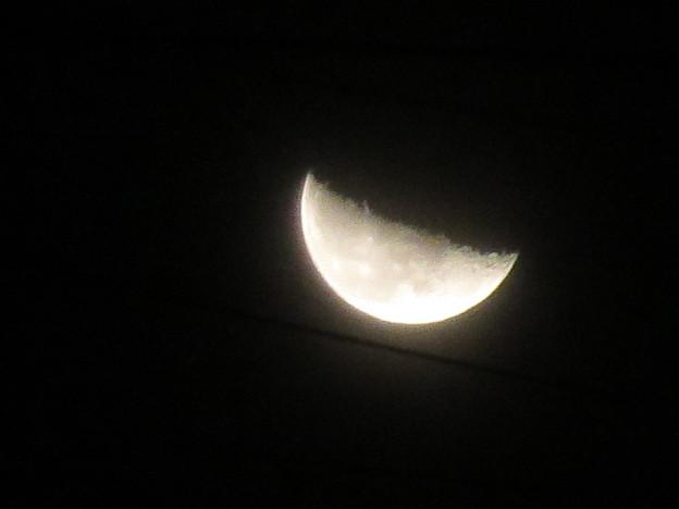 写真: 1月の月