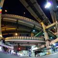 Photos: 箱崎の大蛇
