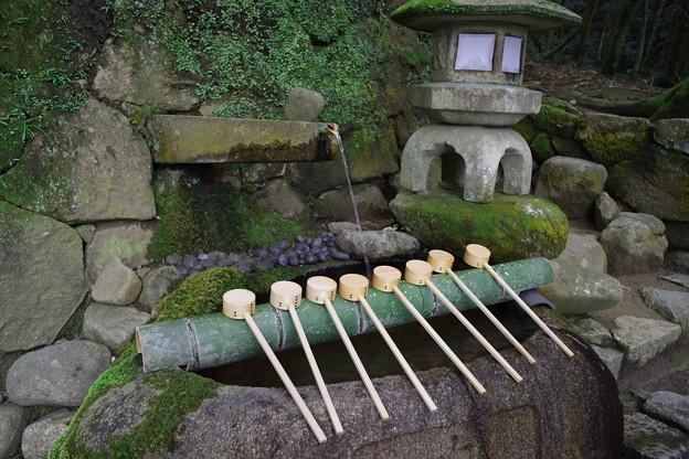 Photos: 石上神宮 手水舎