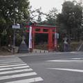 Photos: 式年造替 藤の社