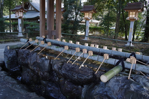 橿原神宮 手水舎