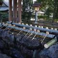 Photos: 橿原神宮 手水舎