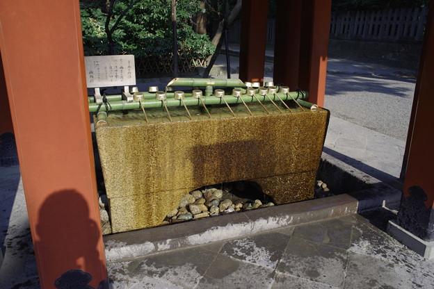 鶴岡八幡宮 手水舎