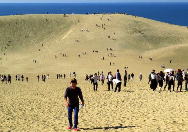 鳥取砂丘1
