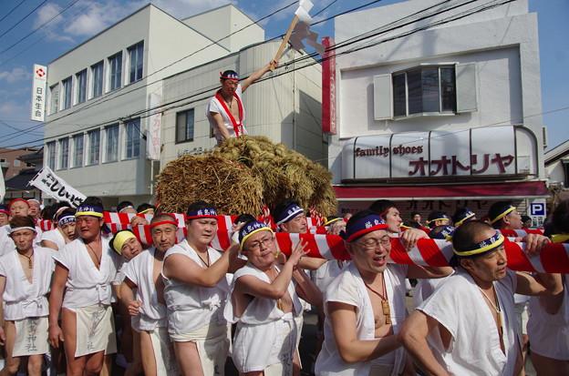つつこ引祭り IMGP3292