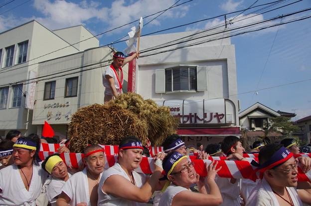 つつこ引祭り IMGP3296