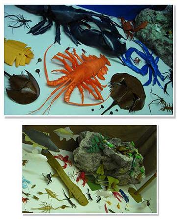 葛西臨海水族園の展示3