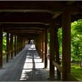 Photos: 橋を