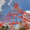 Photos: 足羽山テレビ塔