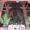 Photos: 東大寺9