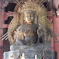 Photos: 東大寺12