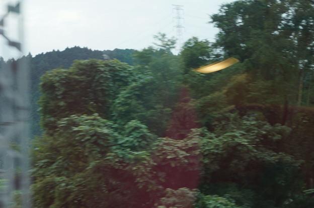 さくらライナーの車窓0013