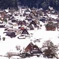 合掌造りの茅葺はここ白川郷と富山の五箇山集落だけ