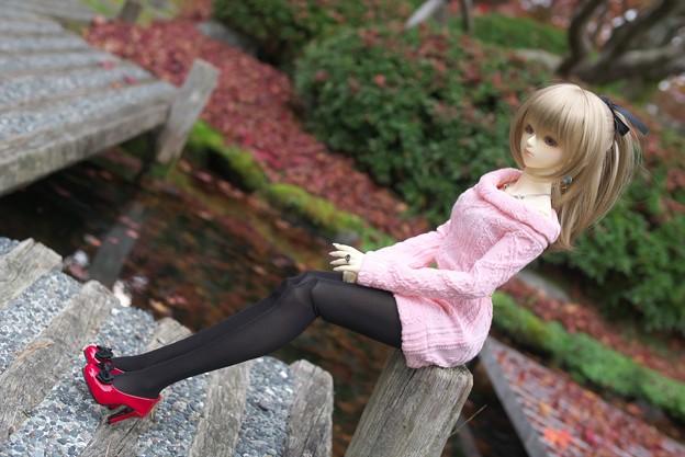 写真: P1320766_s