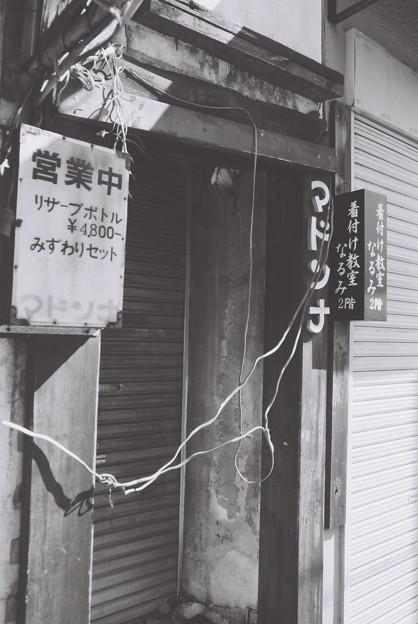 OM-1_Acros_マドンナ-000004