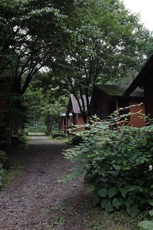 あづま森林公園-1480
