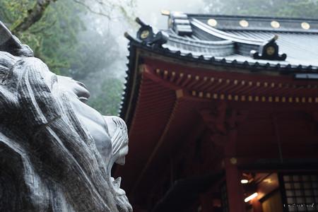 二荒山神社-6653