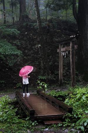 瀧尾神社_20橋-6764