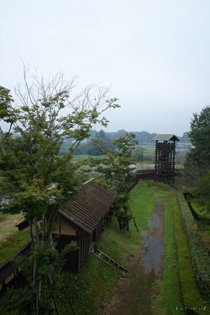 逆井城_09二階櫓-からの眺め-2192