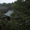 逆井城_18井楼からの眺め-2220