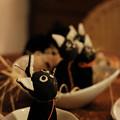 ハロウィン_06黒猫-0565