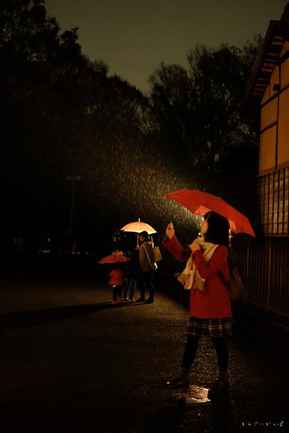 たてもの園_雨-1870