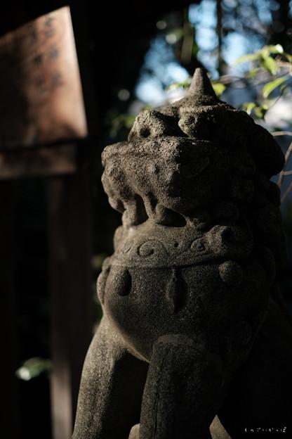大国魂神社_11狛犬-2014