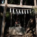08上之台琴平神社-3138