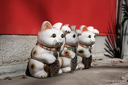 招き猫-3282