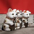 写真: 招き猫-3282