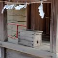 写真: 18渡る風-3555