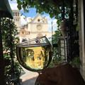 Photos: Assisi