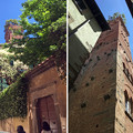 Photos: Lucca