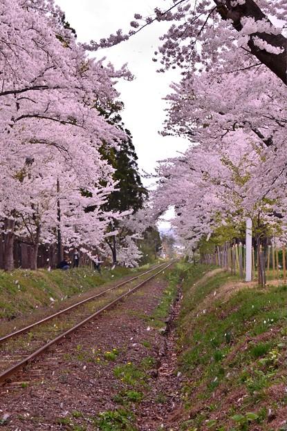 再び列車を待つ風景・・20140501