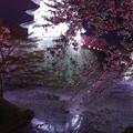 お掘りに映し出される逆さ弘前城と桜花びらと・・20140501