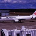 Photos: 東京へ戻るJAL B737-800 三沢空港・・20140502