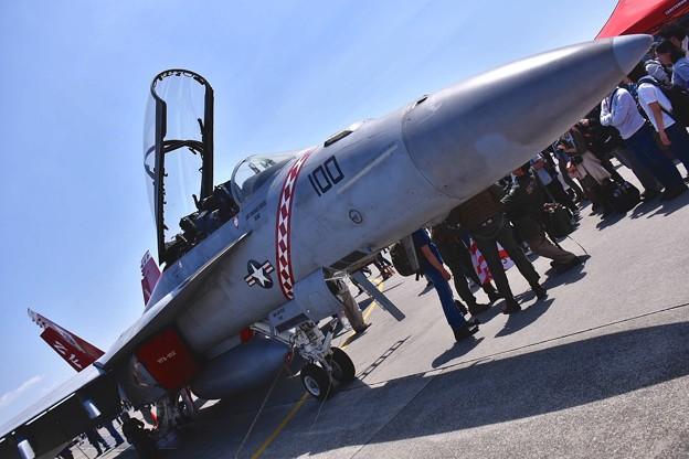VFA-102diamondbacks F/A-18F superホーネット NF100の先頭部