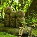 新緑の中に。。良縁地蔵さん 鎌倉長谷寺。。20160624