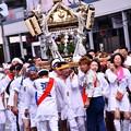Photos: 威勢のいい。。掛け声で。。担ぐ神輿。。横須賀おっぱま祭り 20160710