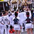 Photos: 町がみんなお祭り気分。。横須賀おっぱま祭り 20160710