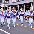 Photos: おっぱま祭りの阿波踊り。。20160710