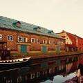 夕暮れの小樽運河。。20160723