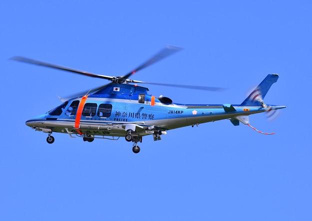神奈川県警ヘリコプター。。飛来