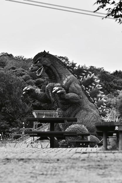 モノクロの風景。。襲いかかるゴジラ。。くりはま花の国 20161002