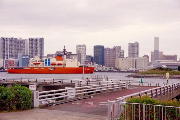 お台場から見る都会風景に砕氷艦しらせ 20161110