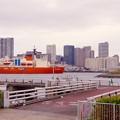 写真: お台場から見る都会風景に砕氷艦しらせ 20161110