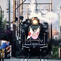 2017年元旦の大井川鉄道SL運行終える。。日章旗付C11190。。20170101