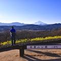 休日の昼下がりの神奈川県二宮町 吾妻山公園。。富士山くっきりと。。20170121