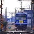 伊豆箱根鉄道大雄山線。。飯田岡付近。。20170205
